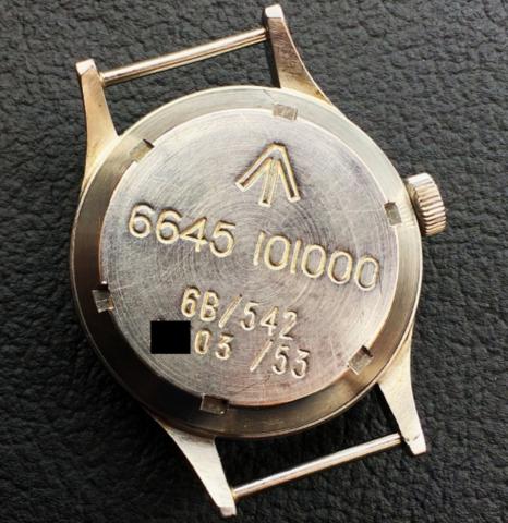 Omega 53: NATO watch strap